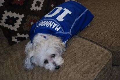 "Princess in her Eli Manning jersey, ""I asked for Matt Ryan."""